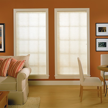 Standard Double Cell Light Filtering Shades