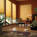Motorized Double Cell Room Darkening Shades